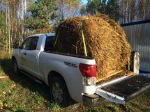 Toyota Tundra 2011 отзыв владельца | Дата публикации: 16.07.2015