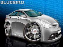 Nissan Bluebird Sylphy 2007 отзыв владельца | Дата публикации: 23.02.2017