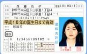 Японские водительские права