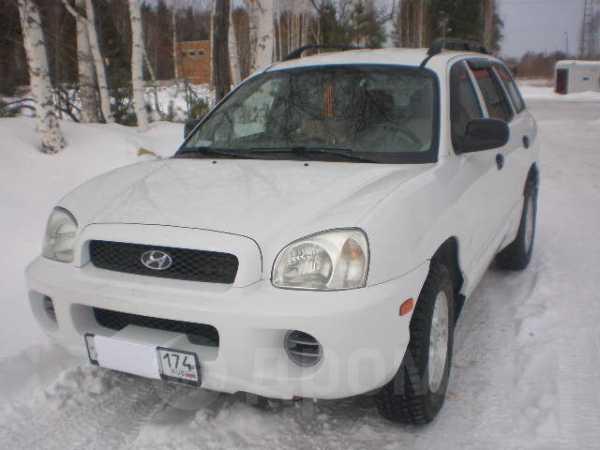 Hyundai Santa Fe, 2001 год, 380 000 руб.