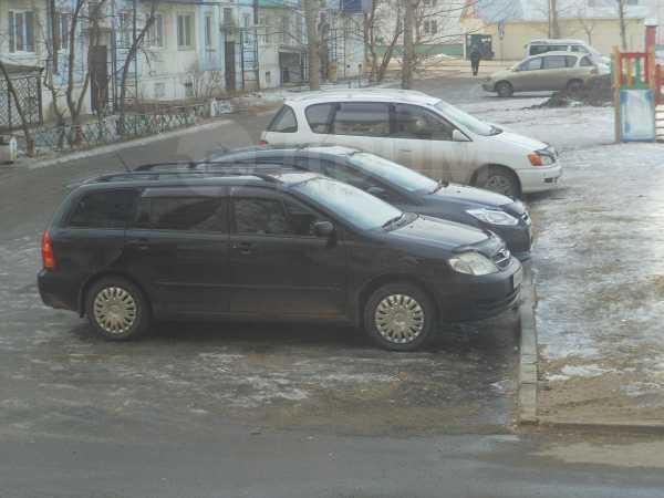 Toyota Corolla Fielder, 2003 год, 333 000 руб.