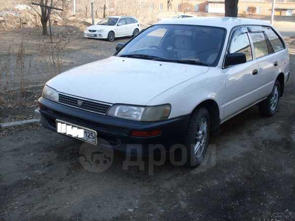 Toyota Corolla, 1999 год, 139 000 руб.