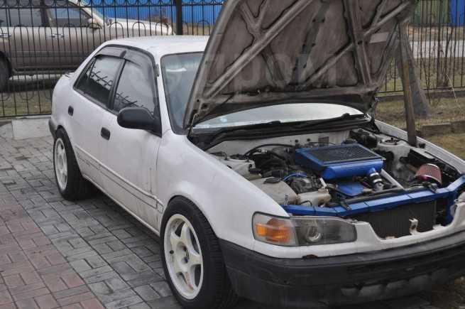 Toyota Corolla, 1995 год, 280 000 руб.
