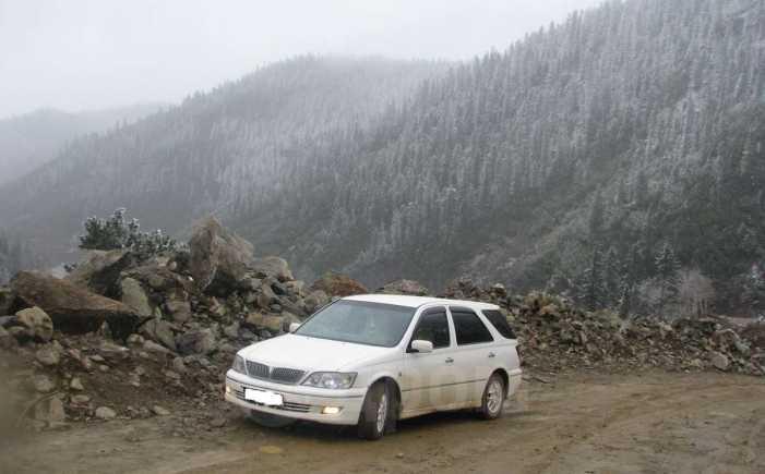 Toyota Vista Ardeo, 2001 год, 335 000 руб.
