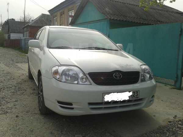 Toyota Corolla, 2001 год, 380 000 руб.