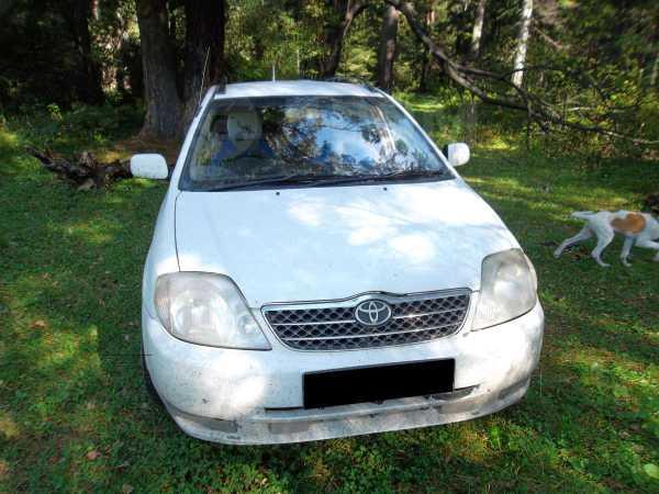 Toyota Corolla Fielder, 2001 год, 305 000 руб.