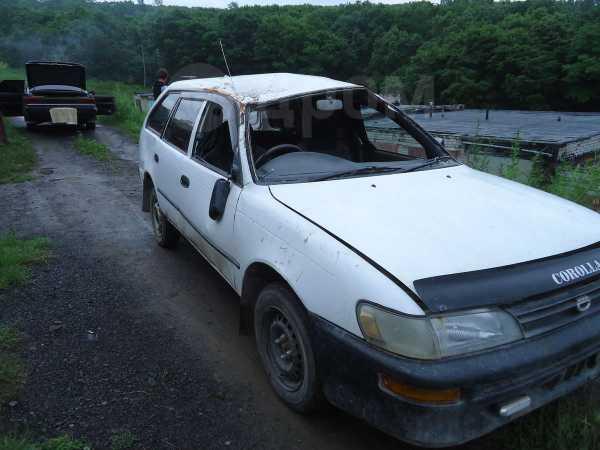 Toyota Corolla, 2001 год, 70 000 руб.
