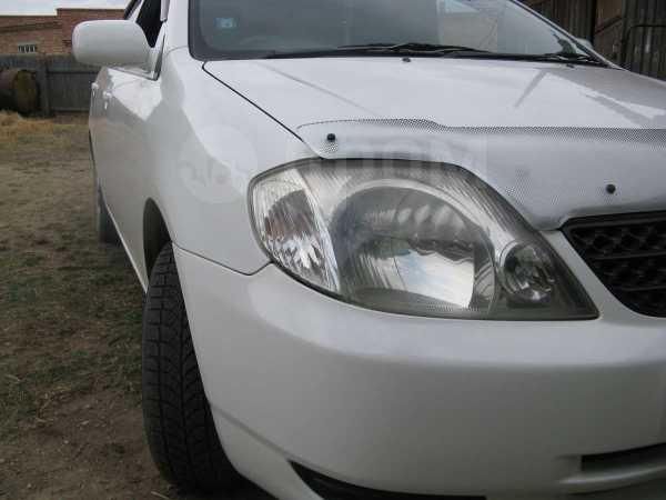 Toyota Corolla, 2001 год, 333 333 руб.