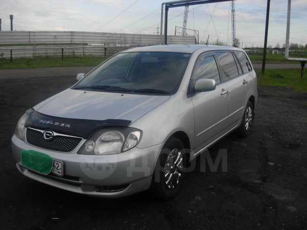 Toyota Corolla Fielder, 2002 год, 298 000 руб.