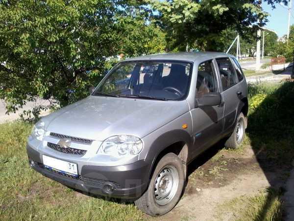Chevrolet Niva, 2009 год, 355 000 руб.