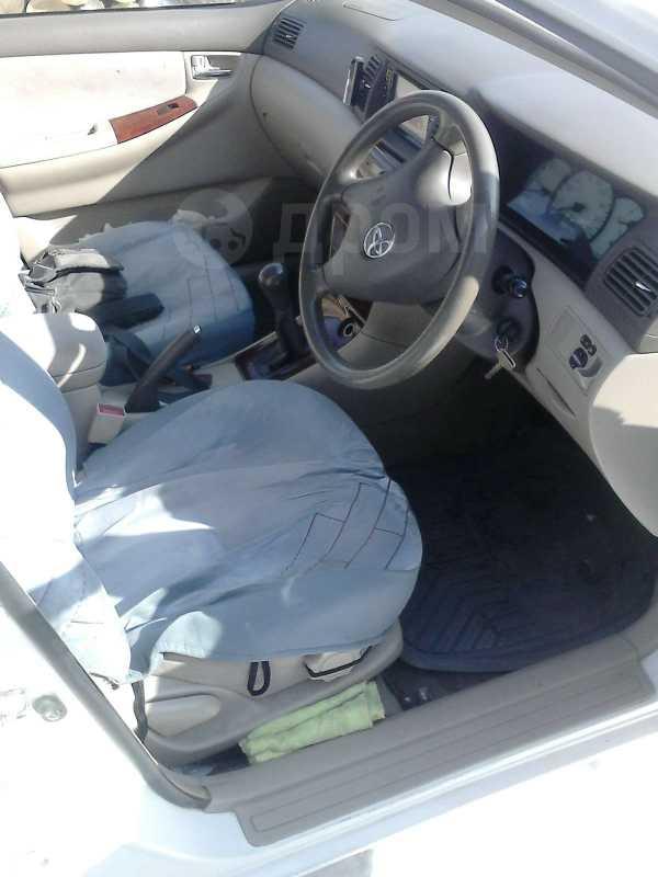 Toyota Corolla, 2002 год, 340 000 руб.