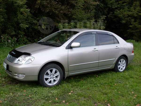 Toyota Corolla, 2003 год, 375 000 руб.