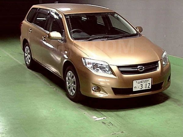 Toyota Corolla Fielder, 2009 год, 450 000 руб.
