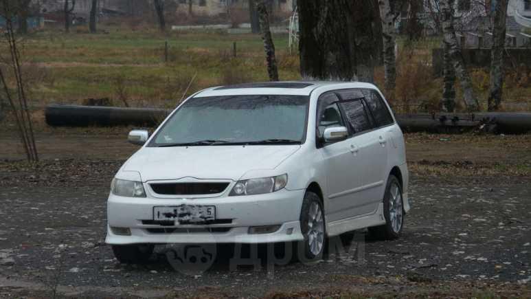 Toyota Corolla Fielder, 2001 год, 267 000 руб.