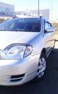 Toyota Corolla Fielder, 2003 год, 373 000 руб.
