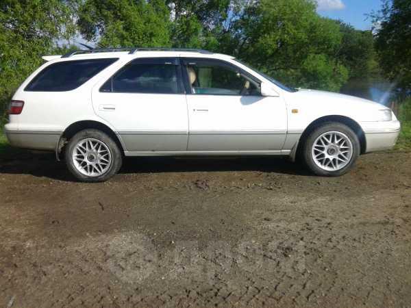 Toyota Camry Gracia, 1998 год, 260 000 руб.