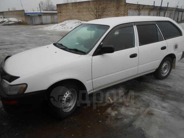 Toyota Corolla, 2001 год, 162 000 руб.