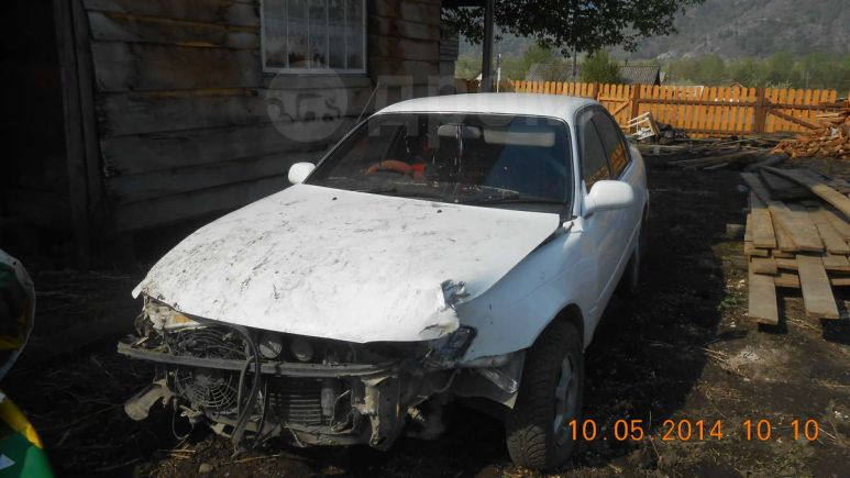 Toyota Corolla, 1994 год, 72 000 руб.