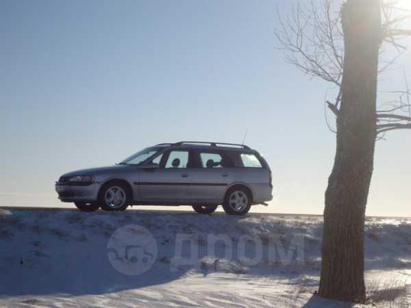 Opel Vectra, 1998 год, 210 000 руб.