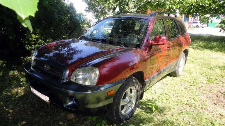 Hyundai Santa Fe, 2001 год, 310 000 руб.