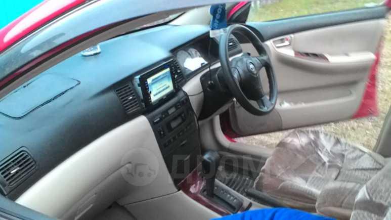Toyota Corolla Runx, 2001 год, 255 000 руб.