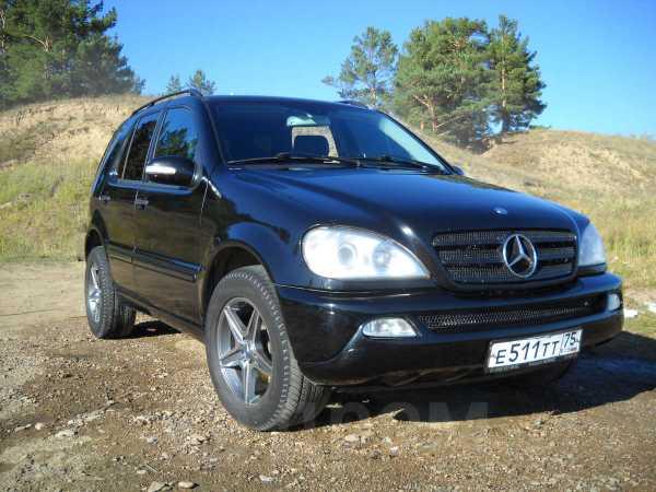 Mercedes-Benz M-Class, 2003 год, 650 000 руб.