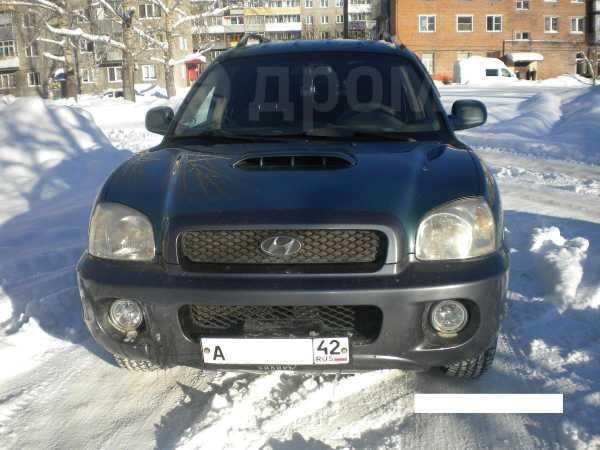 Hyundai Santa Fe Classic, 2002 год, 410 000 руб.