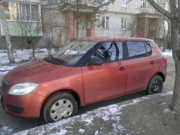 Skoda Fabia, 2010 год, 325 000 руб.