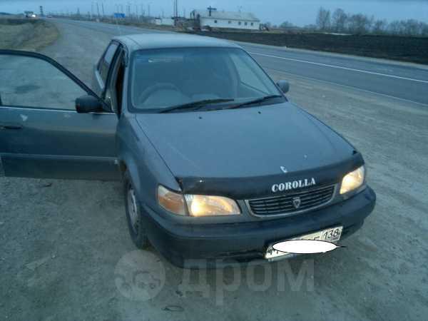 Toyota Corolla, 1998 год, 140 000 руб.