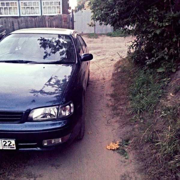 Toyota Corolla, 1995 год, 210 000 руб.