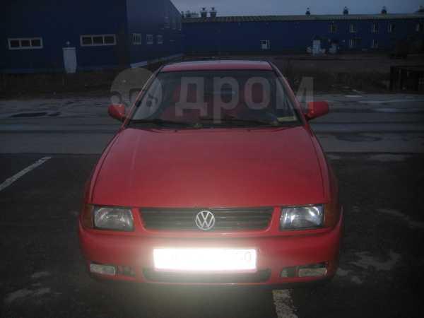 Volkswagen Polo, 1999 год, 125 000 руб.
