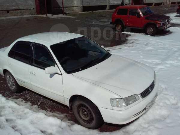 Toyota Corolla, 1997 год, 217 000 руб.