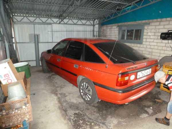 Opel Vectra, 1993 год, 130 000 руб.