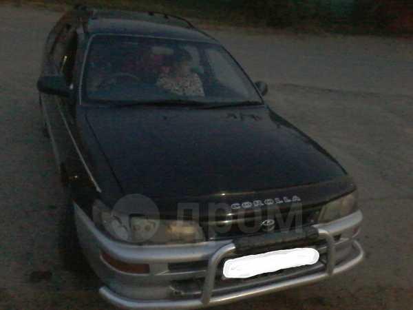 Toyota Corolla, 1996 год, 215 000 руб.