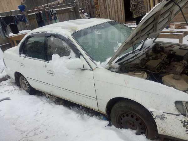 Toyota Corolla, 1995 год, 40 000 руб.