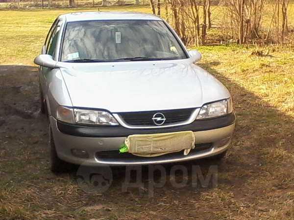 Opel Vectra, 1998 год, 220 000 руб.
