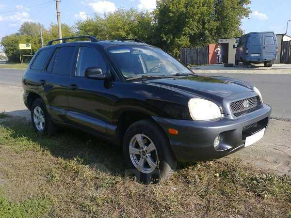 Hyundai Santa Fe, 2003 год, 369 000 руб.