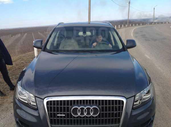 Audi Q5, 2010 год, 1 180 000 руб.