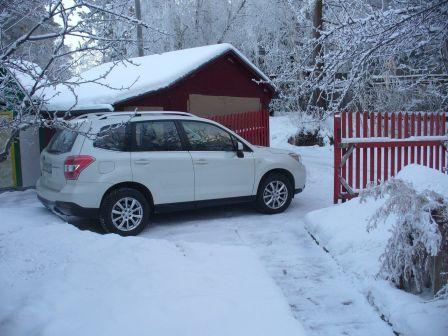 Subaru Forester 2015 - отзыв владельца