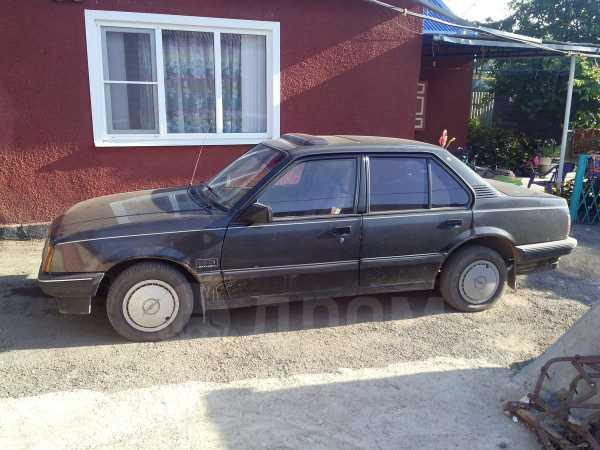 Opel Ascona, 1988 год, 45 000 руб.
