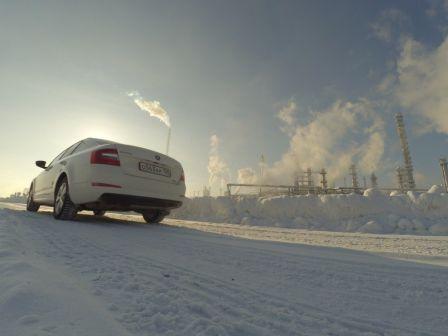 Skoda Octavia 2014 - отзыв владельца