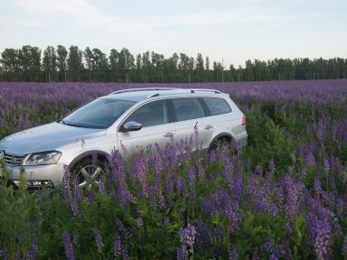 Volkswagen Passat 2013 отзыв автора | Дата публикации 14.03.2016.