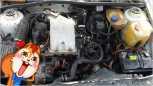 Volkswagen Golf, 1989 год, 85 000 руб.