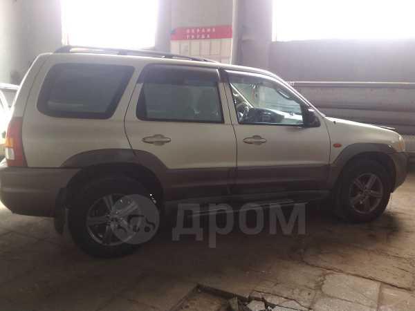 Ford Escape, 2003 год, 430 000 руб.