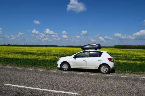 Renault Sandero 2014 - отзыв владельца