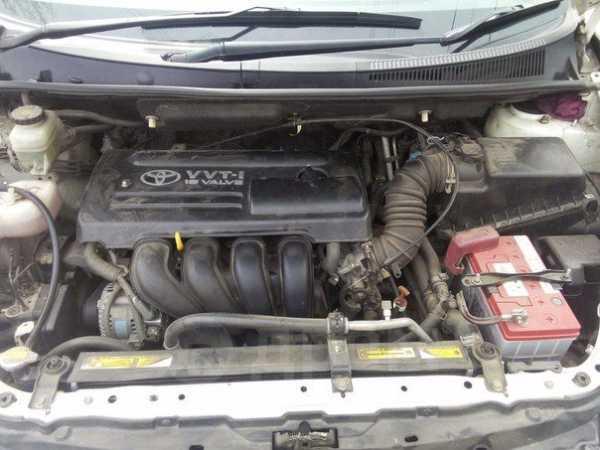 Toyota Wish, 2005 год, 505 000 руб.