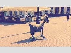 Веселой козе (Памятник)