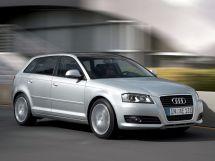 Audi A3 2-й рестайлинг, 2 поколение, 04.2008 - 10.2012, Хэтчбек 5 дв.