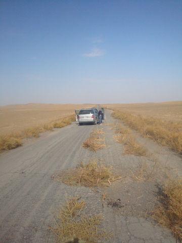 Дороги Казахстана!