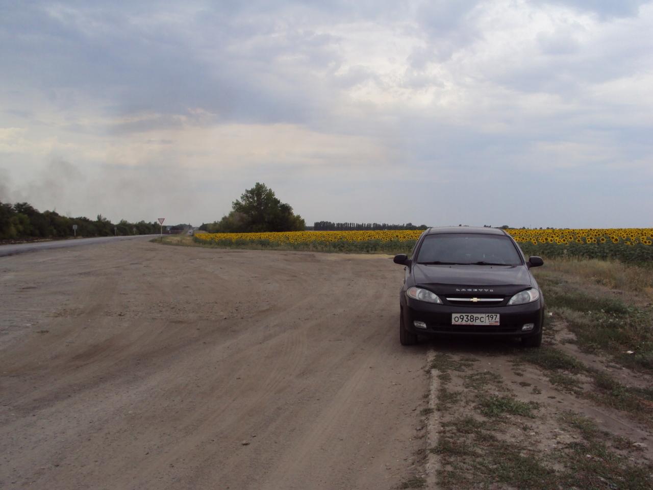 По пути в Волгодонск (остановка в поле с подсолнухами)